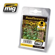 SUNFLOWERS<br>A.MIG-8458